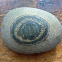 Камень с морским рисунком :: Вера Щукина