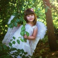 Сказочный лес. :: Оксана Жданова
