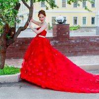 Роза :: kurtxelia