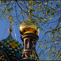 Весна :: Тамара Рубанова