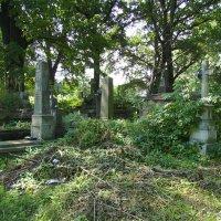 Старое  кладбище  в  Коломые :: Андрей  Васильевич Коляскин