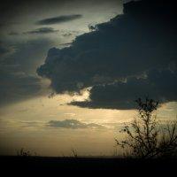 Краденное солнце :: Денис Шевчук