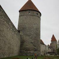Старый город Таллин :: vasya-starik Старик