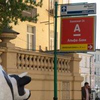 приключения коровы :: Алексей