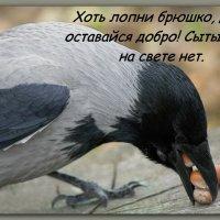Сказ о жадности ... :: Татьяна Волошин