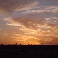 Вечернее небо :: Вера Щукина