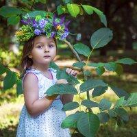 Сказки в лесу :: Оксана Жданова