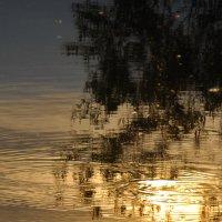 А вечером солнце купается в реке... :: Татьяна Аистова