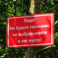 призыв.. :: Михаил Жуковский