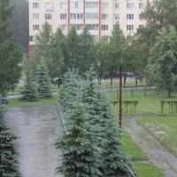 Град на детской площадке :: Наталья Золотых-Сибирская