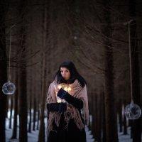 ...Волшебство лесной феи. :: Elena Tatarko (фотограф)