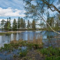 Пейзажы парка Монрепо :: Gordon Shumway