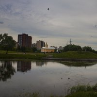 Озеро в парке :: сергей адольфович