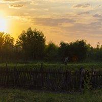 Утро :: Вадим Савенко