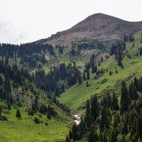 вид на гору :: Горный турист Иван Иванов