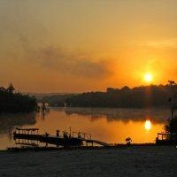 Утро на Амазонке :: максим лыков