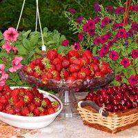Ягодное лето!!! :: Светлана Гуагова