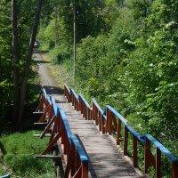 Наш мостик :: Татьяна Гурова