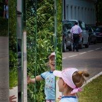 как меня много ! ! ! :: Сергей Розанов