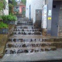 Дождь в Гурзуфе :: Ольга Иргит