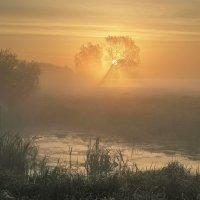 В тумане :: Сергей Михайлович