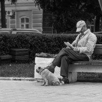 летний день :: Владимир Голиков