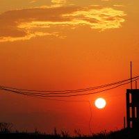 Солнце обрывает провода) :: Марина Апрельская
