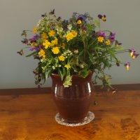 цветы :: александр пегов