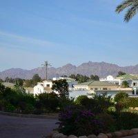 Горы Синайской пустыни :: Алексей Альбин