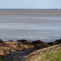 Петергоф сброс воды питающий фонтаны в залив :: Алексей Корнеев