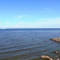 Вид на Финский залив :: павло налепин