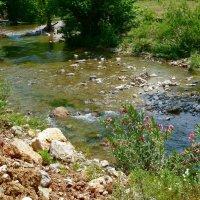По камешкам речка бежит. :: Чария Зоя