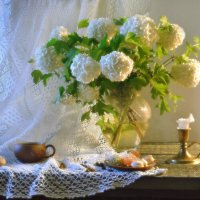 Калины цвет... :: Валентина Колова