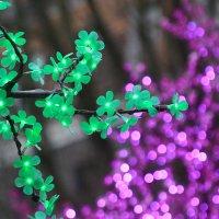 Волшебные деревья :: Евгений Кузнецов