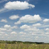 Небо над Чекалиным. :: Яков Реймер
