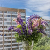 Летний букет :: Elena Ignatova