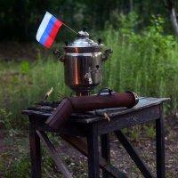 Россия, вперед! :: Ирина Зайцева