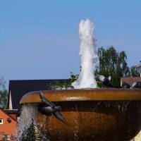 Крутое пике у фонтана. :: Антонина Гугаева
