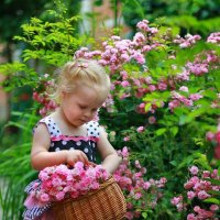 В саду :: Мария Вылегжанина