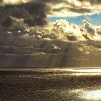 Луч солнца... :: Виктор Фин