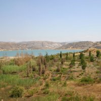 Летние уголки знойного Кипра. :: Одиноков Юрий