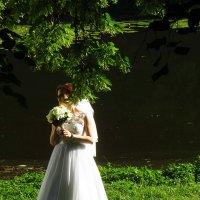 Какая же свадьба без невесты?! :: Андрей Лукьянов