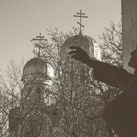 """памятник """"Летят журавли"""" :: Леонид Сергиенко"""