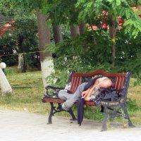 Полежать,отдохнуть.... :: Наталья (D.Nat@lia) Джикидзе (Берёзина)