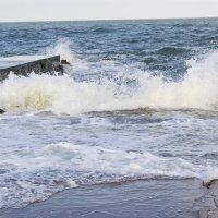 Море :: Яна Кононенко