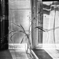 Есть у печали - день.  В доме гуляет тень. :: Ирина Данилова