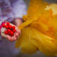 осень :: Виктория Глазикова