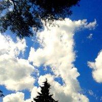 Облака :: Кристина Кудряшова
