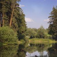 Пейзаж :: Александр Михеев