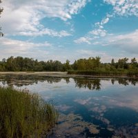 На озере :: Николай Алехин